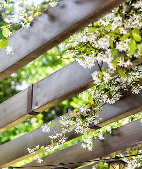 Golden Willow Landscaping Inc. Pergola