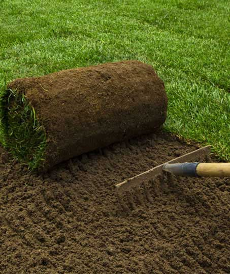 Golden Willow Landscaping Inc. Sod Installation