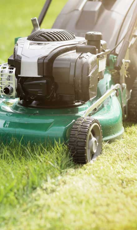 Golden Willow Landscaping Inc. Residential Lawn Mowing
